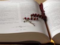 beads-bible-blur-book-236339
